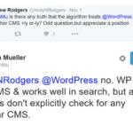 Bestätigt: Google arbeitet gerne mit WordPress Seiten