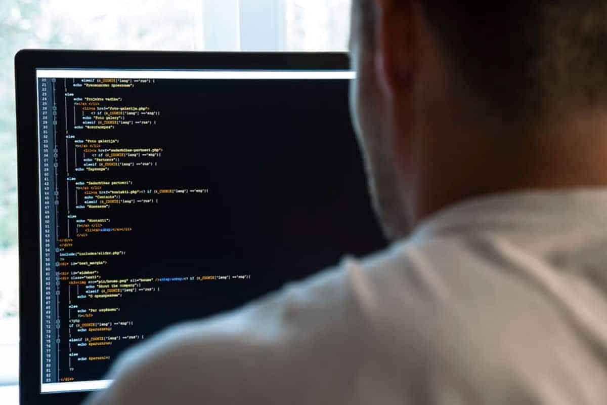 Individuelle Weiterentwicklungen von WordPress durch Programmierung