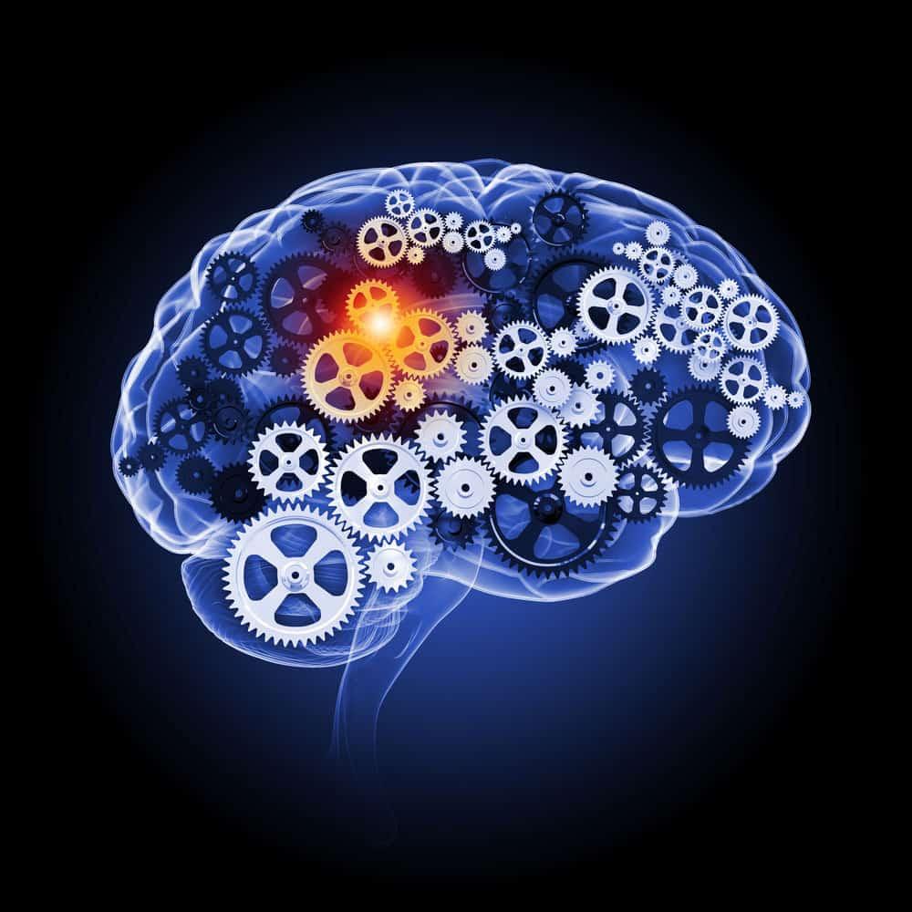 Onlinemarketing Beratung: Neuromarketing psychologisch empfehlenswert